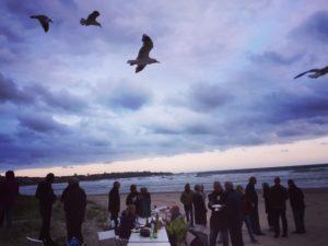 the gulls soon found us..